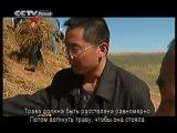 CCTV - Видео блог на русском языке - Путешествия по Китаю - Чудо-Шапотоу